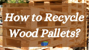 Recycle Wood Pallets BLOG
